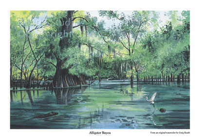 "Craig Routh, Artist & Illustrator Scenic watercolor gallery - ""Alligator Bayou"""